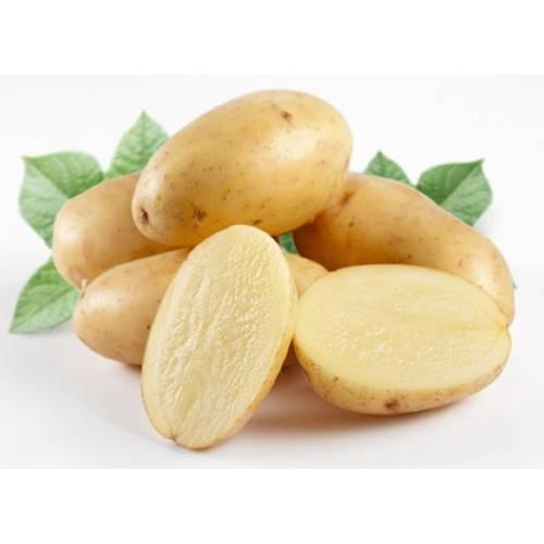 Картофель молодой (Египет)