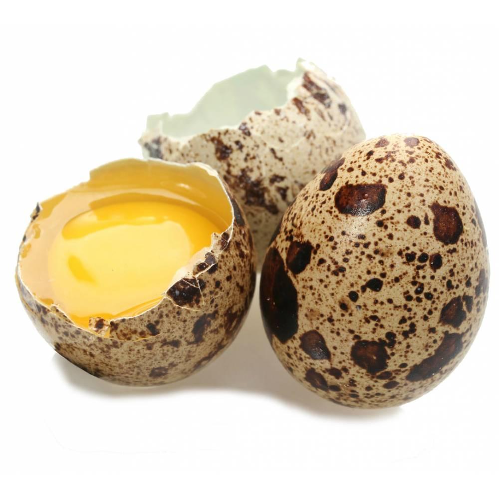 მწყერის კვერცხი გაიზარდა potency